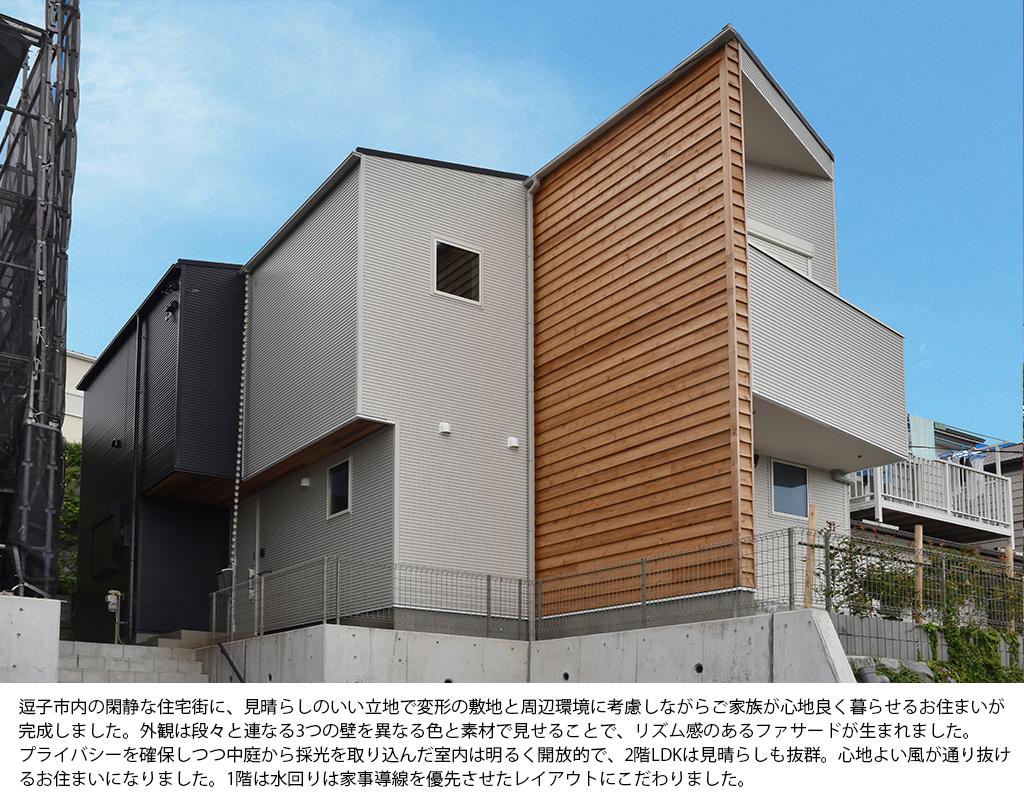 3色の壁の家